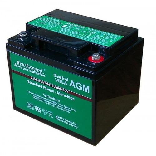 Аккумулятор для ИБП EverExceed AGM 12V 45Ah (ST-1240) - купить в SADOVKA