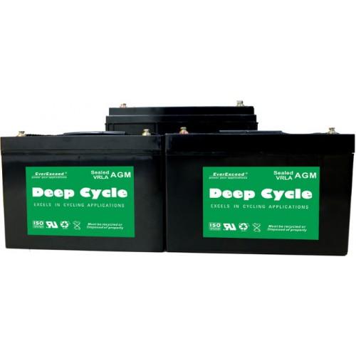 Тяговый аккумулятор EverExceed DP-1255 (DP-1255) - купить в SADOVKA