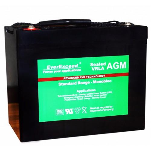 Аккумулятор для ИБП EverExceed AGM 12V 89Ah ST-1280 (ST-1280) - купить в SADOVKA