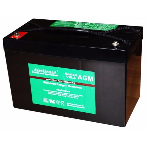 Аккумулятор для ИБП EverExceed Тяговый AGM 12V 100Ah DP-12100 (DP-12100) - купить в SADOVKA