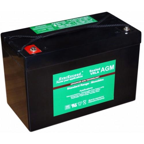 Аккумулятор для ИБП EverExceed AGM 12V 123Ah ST-12110 (ST-12110) - купить в SADOVKA