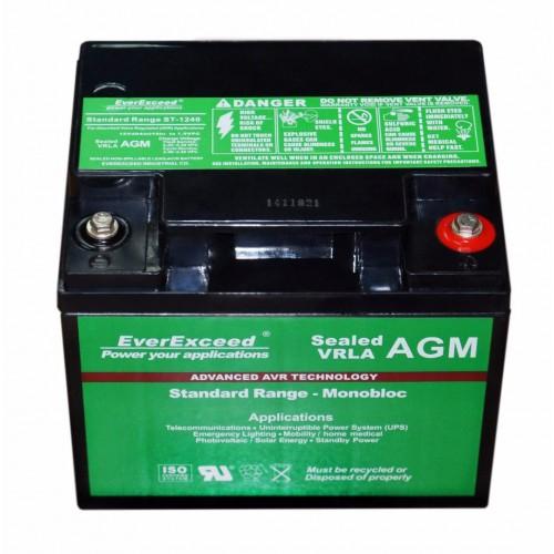 Аккумулятор EverExceed ST-1245 (ST-1245) - купить в SADOVKA